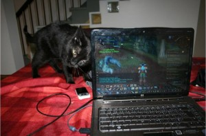 Ms. Salem being an asshole when Mommy is trying to game.