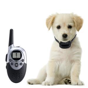 puppy shock collar