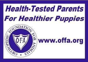 OFFA puppy health testing